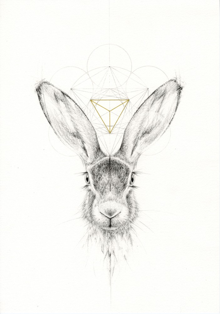 THE HARE WITH THE GOLDEN TRIANGLE (FOX AND THE HARE SERIES)