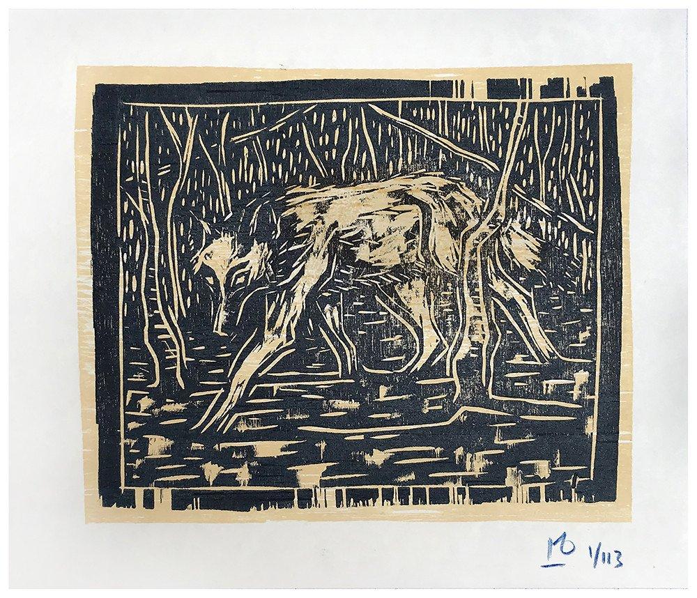 Lone wolf in birchwood